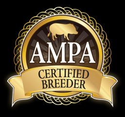 certified-breeder-square-black-background-solid